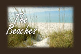 the beaches of north captiva florida